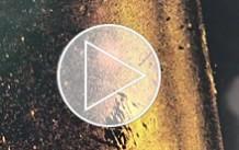 video_thump_220x138_mega_vertailu.jpg